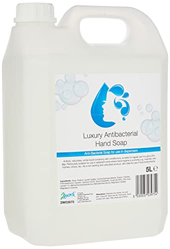 2WORK 2W03975 5 L Anti-Bacterial Hand Wash,Multicolor, Pack of 1 from 2WORK