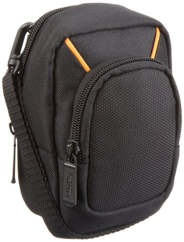 AmazonBasics camera bag for compact cameras, large, 3.9 x 2.4 x 5.7 inches from AmazonBasics