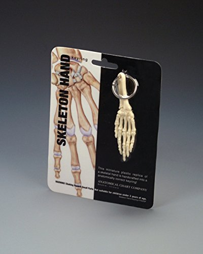 "Anatomical Chart 00007032SP""Anatomical Key Ring Collection"" Gift, Hand from Anatomical Chart"