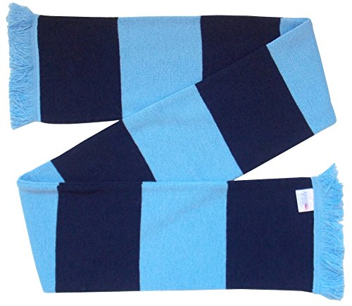 Arena Navy and Sky Blue Retro Bar Scarf from Arena