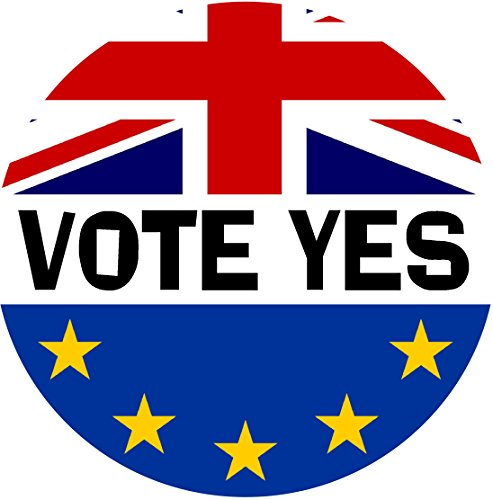 Vote Yes (TWO PACK) Car Bumper / Laptop / Window / Decal/Sticker Referendum/Brexit/European Union EU Vote Yes/No from Baked Bean Store