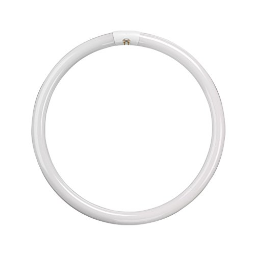 22w BELL T9 Circular Triphosphor Fluorescent Tube Cool White Colour - 840 [4000k] (BELL 04194) from Bell