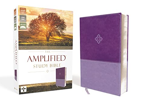 Amplified Study Bible, Imitation Leather, Purple from Zondervan