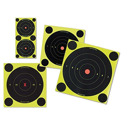 "Birchwood Casey Shoot N C Targets 3"" round x 48 from Birchwood Casey"