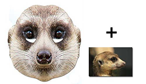 3fe68f63 Mask Pack - Meerkat Animal Card Party Face Mask includes 6x4 inch (15cm x  10cm