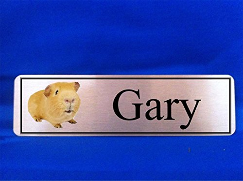 Personalised Gold Guinea Pig Hutch Plaque Door Sign 150mmX50mm from CC Memorials
