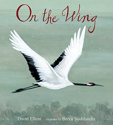 On the Wing from Candlewick Press (MA)