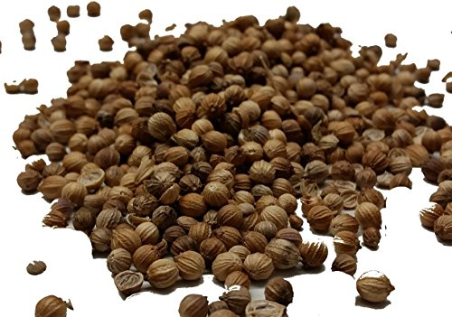 Coriander Seeds - Take the Taste Test - SPICESontheWEB (50g) from Chillies on the Web