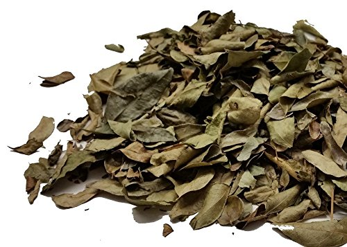 Curry Leaves - Take the Taste Test - Spices on the Web (10g) from Chillies on the Web