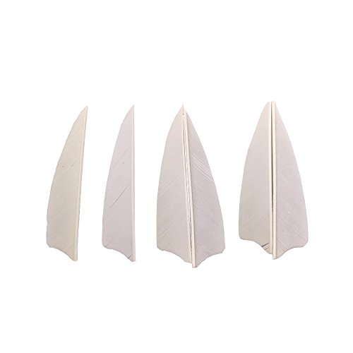 50pcs Arrow Turkey Feathers 3 inch Natural Feather Fletching Right Wing Peltate (White) from China Wilderness Hunter