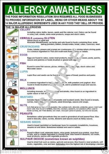 FOOD ALLLERGY AWARENESS A4 LAMINATED POSTER from CP Compliance Posters UK