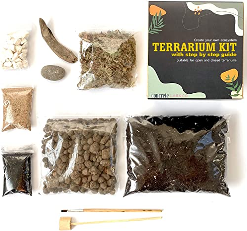 ConcreteLab&Co Terrarium DIY Kit for Succulents and Cacti Plants with Step by Step Guide Includes Soil Charcoal Pebbles Sphagnum Moss Sand Driftwood & Brush (Small) from ConcreteLab&Co