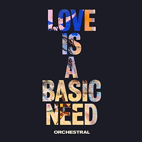 Love Is A Basic Need (Orchestral) [VINYL] from COOKING VINYL