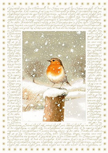 Coppenrath Christmas Robin Big Traditional German Advent Calendar 41 cm Wide x 46 cm Glitter Gold foil and Hanging Ribbon from Coppenrath