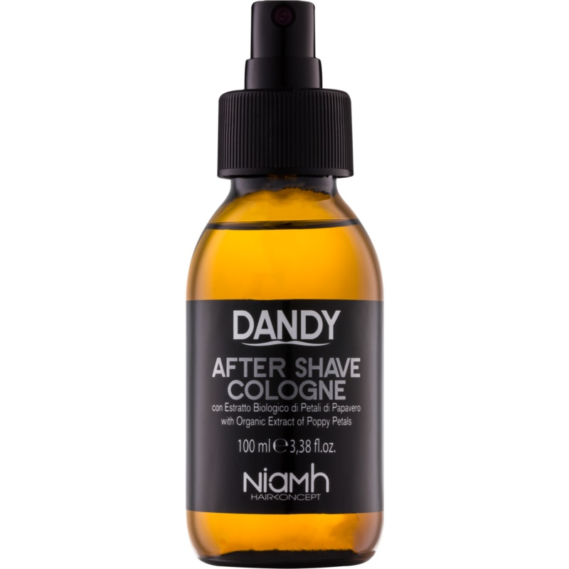 DANDY After Shave Aftershave Water 100 ml from DANDY