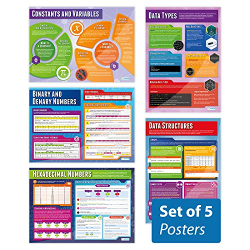Data Representation Posters - Set of 5 | Computer Science Posters | Gloss Paper measuring 850mm x 594mm (A1) | STEM Posters for the Classroom | Education Charts by Daydream Education from Daydream Education