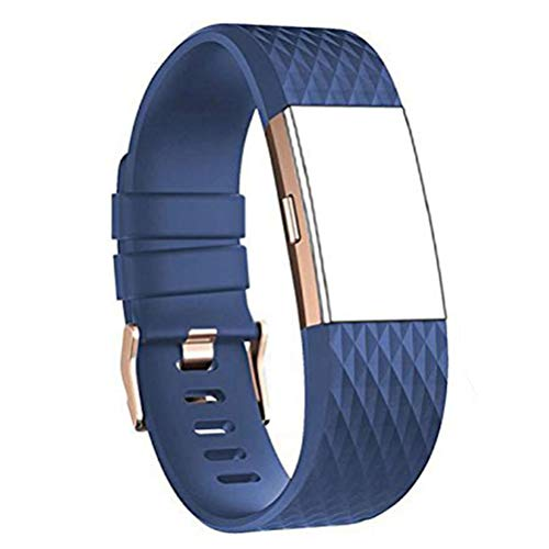 DD For Fitbit Charge 2 Straps, Replacement Accessories Watch Band Adjustable Silicone Wrist Straps for Fitbit Charge 2 with ROSE GOLD BUCKLE from DD band