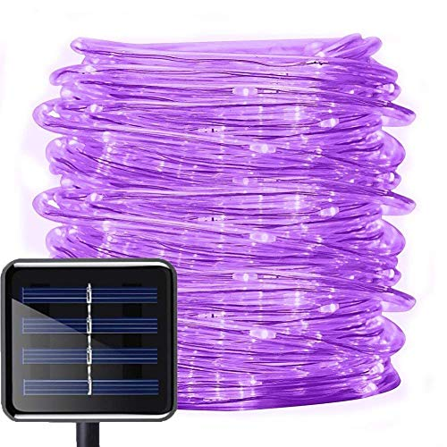 Solar Rope Lights,DINOWIN 100 LEDs 39ft/12M Waterproof Copper Wire Lights Tube, Outdoor String Lights for Garden Yard Path Fence Tree Wedding Party Decorative (Purple) from DINOWIN