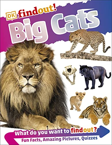 DKfindout! Big Cats from DK Children