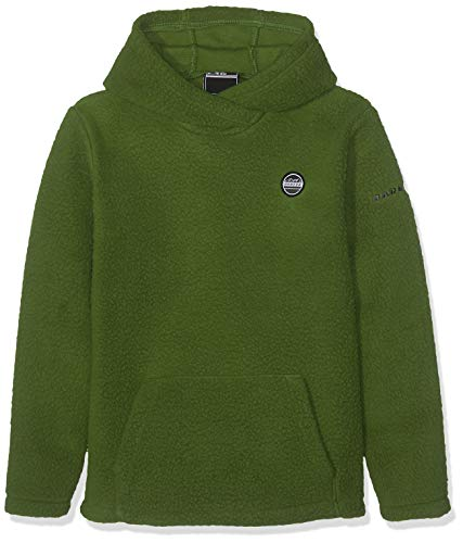 Dare2B Recast Kids Hooded Heavyweight Borg Fleece, Mantis Green, Size 9-10 from Dare 2b