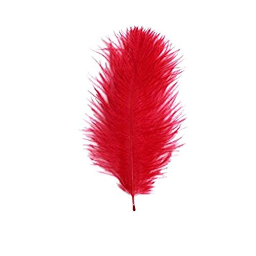 Diamante Crafts Small Ostrich Feathers - 10 Per Pack - 5cm - 15 cm - Red from Diamante Crafts