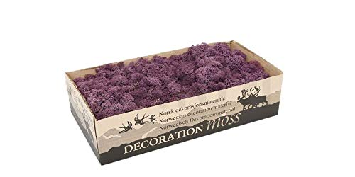Moss - Norwegian Reindeer - Natural Preserved Dried - 20 Colours - Choose Weight (Aubergine - Moss, 500 Grams) from Diamante Crafts