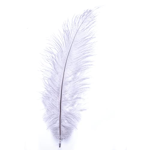 "Ostrich Feathers - 10"" - 12"" / 25cm - 30cm - Pick Quantity / 25 Colours (Silver Grey, 20 x Ostrich Feathers) from Diamante Crafts"