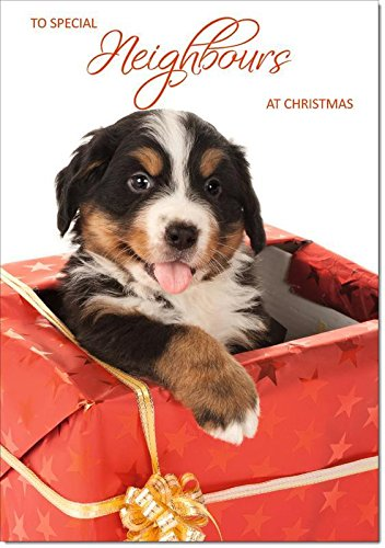 Doodlecards Neighbours Christmas Card Puppy in Parcel - Medium Size from Doodlecards