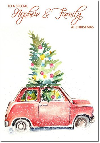 Doodlecards Nephew & Family Christmas Card Christmas Tree in Car - Medium Size from Doodlecards