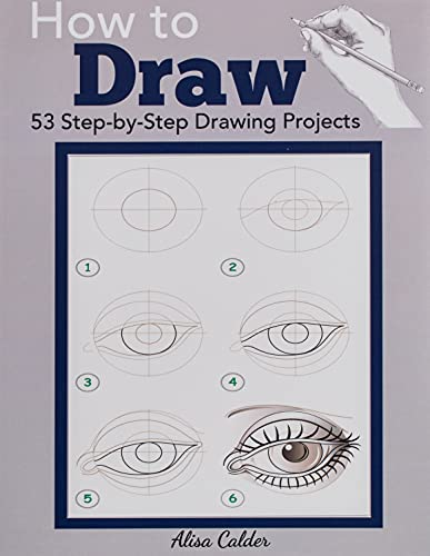 How to Draw: 53 Step-by-Step Drawing Projects (Beginner Drawing Books) from Dylanna Publishing, Inc.