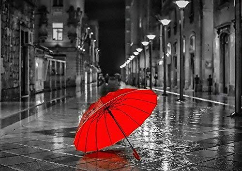 Black and White City RED Umbrella Poster (A0-1189x841MM) from Dynamo Printing Ltd