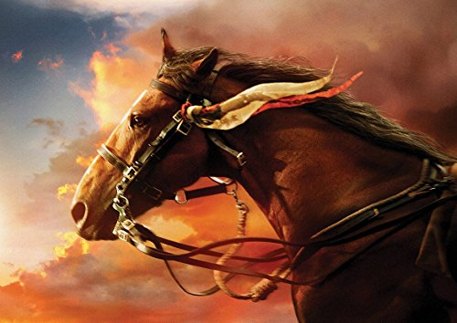Galloping Horse Poster (A0-1189x841MM) from Dynamo Printing Ltd