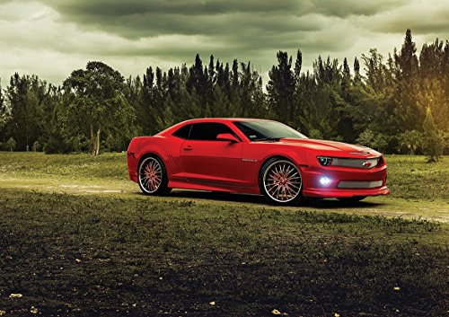 RED Chevrolet Camaro SS PAPIVALDI Poster (A0-1189x841MM) from Dynamo Printing Ltd