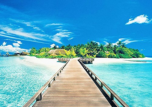 Tropical Island Paradise Indian Ocean Poster (A2 (594 X 420MM)) from Dynamo Printing Ltd