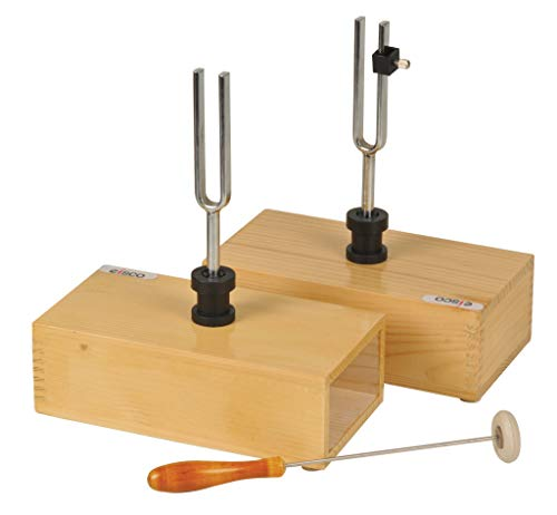 Eisco Labs Pair of Steel Tuning Forks (440Hz) in Wood Bases, One Adjustable from Eisco
