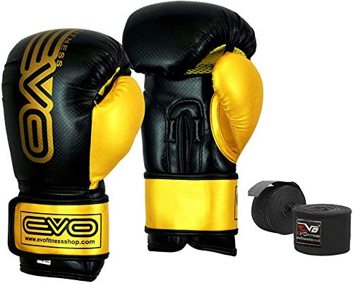 Evo Fitness Boxing Gloves: Fight Gloves: Find EVO Fitness Products Online At