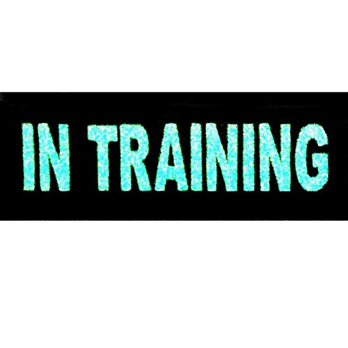 Glow in Dark in Training Service Animal Vests/Harnesses Emblem Embroidered Fastener Hook & Loop Patch, 4 X 1.5 Inch from EmbTao