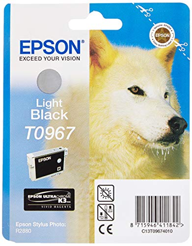 Epson T0967 Ink Cartridge, Light Black, Genuine, Amazon Dash Replenishment Ready from Epson