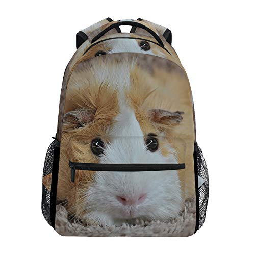 Drawstring Backpack Guinea Pigs With Holly Blue Shoulder Bags