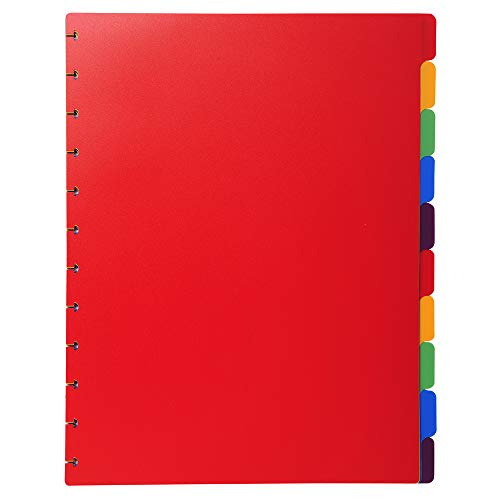 Exacompta Inserts for Display Book, A4 Maxi, 10 Positions - Assorted Colours from Exacompta