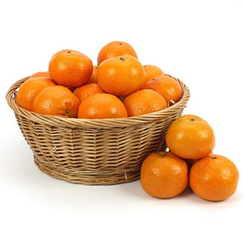 Orange Fruit Basket - Fruit Gift Baskets and Gift Hampers with Next Day UK delivery with Personal Message Attached from Express4Fruits