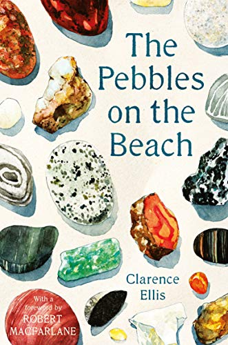 The Pebbles on the Beach from Faber & Faber
