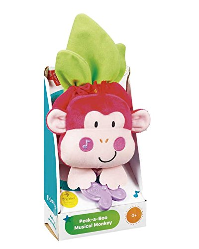 Fisher Baby Musical Instrument - Monkey Games and Songs from Fisher-Price