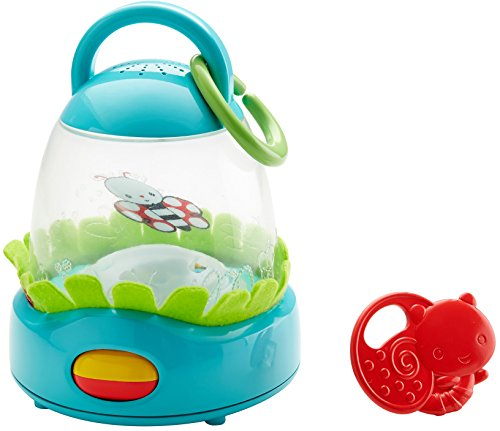 Fisher-Price DFP93 Flutter and Glow Lantern from Fisher-Price