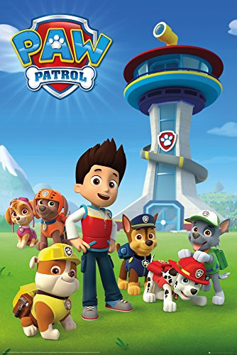 GB eye LTD, Paw Patrol, Team, Maxi Poster, 61 x 91.5 cm, Wood, Multi-Colour, 91.5 cm L X 61 cm W from GB eye