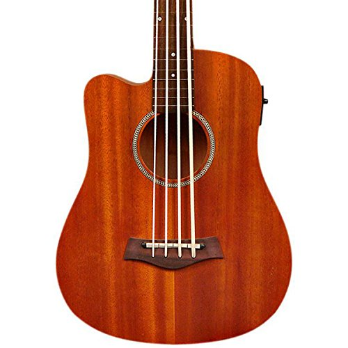 "Gold Tone 23"" Scale Left-Handed Fretless Acoustic-Electric MicroBass Natural from Goldtone"