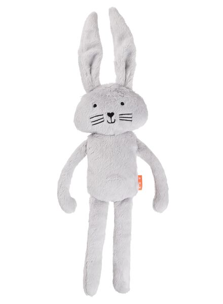 HEMA Baby Teddy (grey) from HEMA