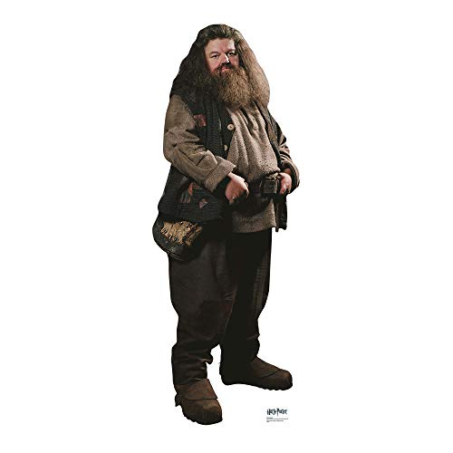 Harry Potter Hagrid Cardboard Cut Out from Harry Potter