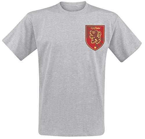 Harry Potter Men's House Gryffindor T-Shirt, Grey (Sports Grey), Large from Harry Potter