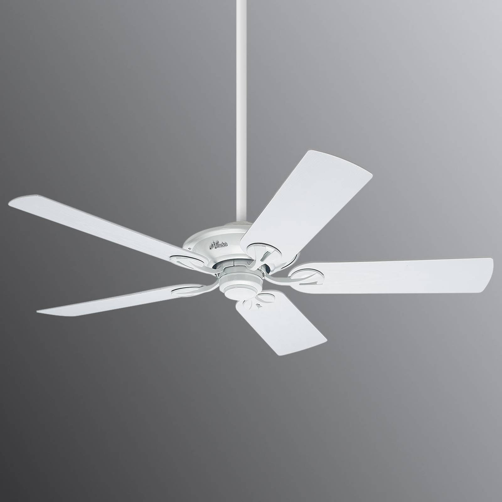 Hunter Maribel white ceiling fan from Hunter